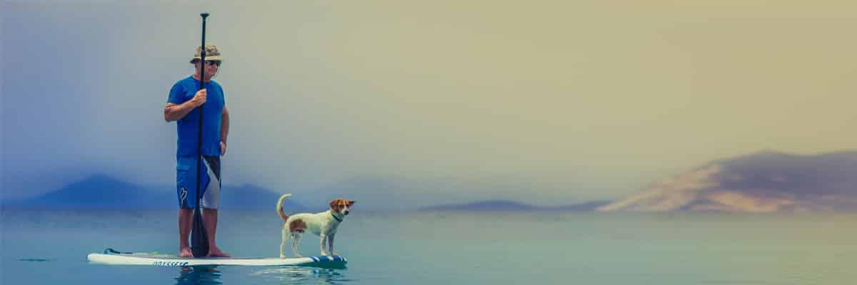 stand up paddler mit hund